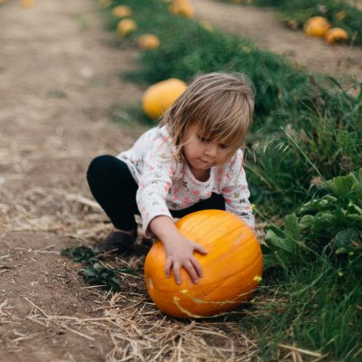 24 Fun Fall Activities for Kids
